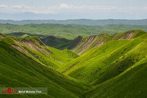 عکس/ طبیعت بهاری مراوه تپه