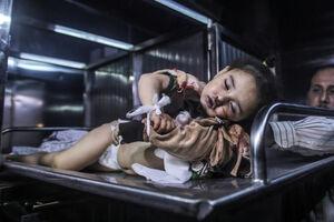 فیلم/ مرگ بر این حقوق بی بشر!