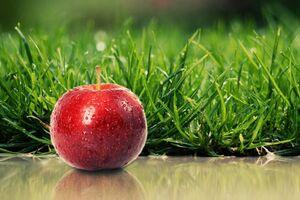 دلایل توصیه پزشکان به مصرف روزانه سیب