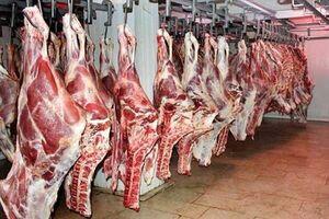 شش ماه قبل گرانی گوشت را هشدار داده بودیم