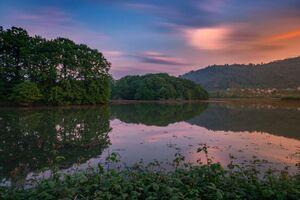 منطقه: تالاب سوستان لاهیجان، گیلان عکاس: پویا پالیزکار