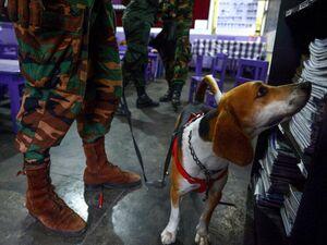 عکس/ تشدید تدابیر امنیتی در سریلانکا