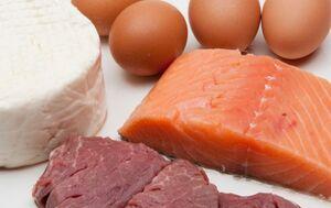 ۷ منبع اصلی پروتئین
