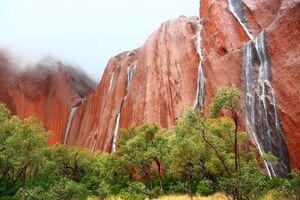 عکس/ آبشاری تماشایی در استرالیا