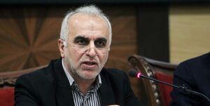 واکنش وزیر اقتصاد به باجههای VIP بانکها