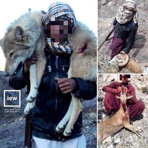 عکس/ بازداشت شکارچی سنگدل