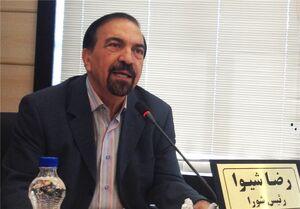 رئیس شورای رقابت: قیمت گذاری خودروها ۵ درصد زیر قیمت بازار اشتباه بود