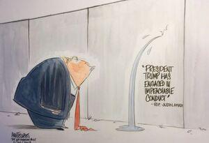 کاریکاتور/ دیوار ترامپ ترک برداشت