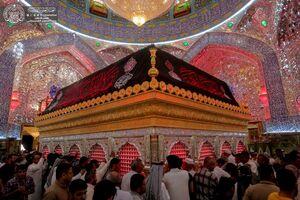 فیلم/ حرم حضرت علی(ع) سیاه پوش شد