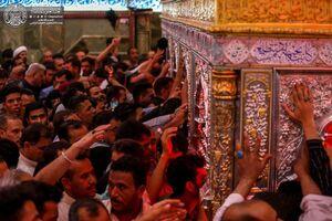 فیلم/ حرم امیرالمؤمنین در شب شهادت مولا علی (ع)
