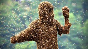 عکس/ لباسی از زنبور!