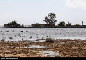 اردوگاه سیل زدگان یادمان ثامن الائمه در شهرستان حمیدیه- خوزستان