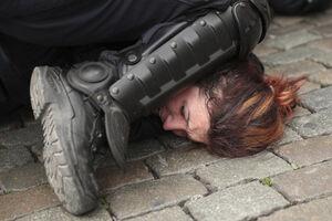عکس/ اوج دموکراسی در قلب اروپا