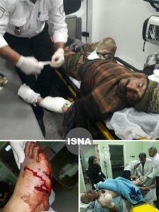 عکس/ حمله پلنگ به چوپان مازندرانی