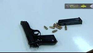 نجفی با چه اسلحهای همسرش را کشت؟ +عکس
