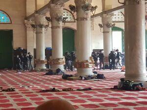 فیلم/ یورش وحشیانه صهیونیستها به داخل مسجدالاقصی