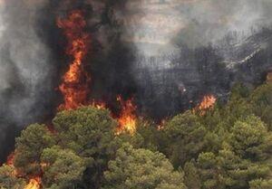 فوران آتش در جنگلهای مرزی خوزستان و کهگیلویه و بویراحمد