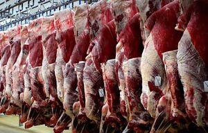 گوشت نمایه