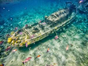 عکس/ غرق شدن در اعماق اقیانوس