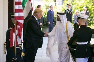کدام شاهزاده عرب، الگوی ترامپ است؟