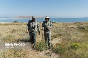 عکس/ یک روز با محیطبانان پارک ملی دریاچه ارومیه