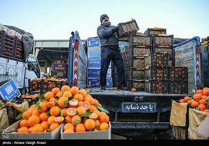 قیمتهای میادین میوه و تره بار ۳۸ درصد ارزانتر از سطح شهر است