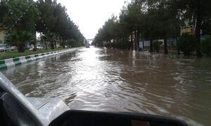 عکس/ بارش باران سیل آسا در دامغان