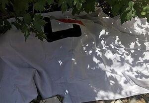 سقوط مرگبار جوان تهرانی از پشتبام +عکس