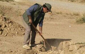 «مرد درختی» ایران را بشناسید +عکس