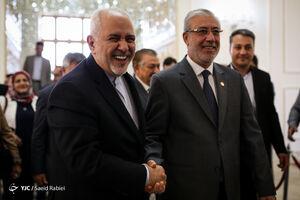 عکس/ دیدار نایب رئیس مجلس عراق با ظریف