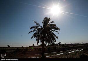 عکس/ کاهش شدید آب رودخانه کرخه نور