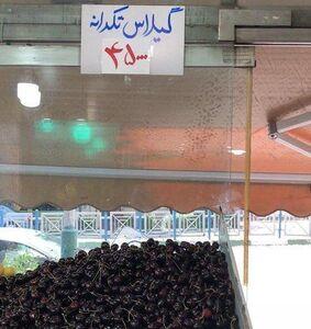 عکس/ یارانه هر ایرانی، یک کیلو گیلاس!
