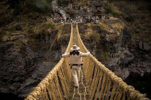 عکس/ ساخت پل با علف