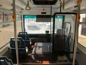 اتوبوس صورتی ویژه بانوان