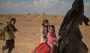سازمان ملل: ۵۵ هزار داعشی در عراق و سوریه مستقرند