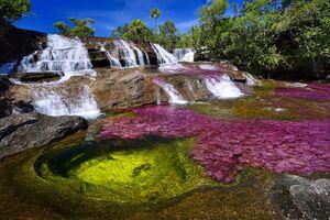 عکس/ رنگارنگ ترین رودخانه دنیا