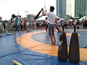 استقبال مردم و رسانههای اروپایی از ورزش زورخانهای
