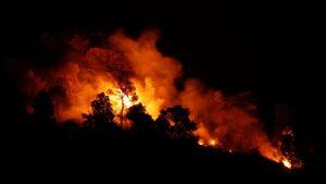 فیلم/ آتشسوزی پس از زلزله ۷ ریشتری
