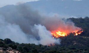 عکس/ آتشسوزی گسترده در اسپانیا