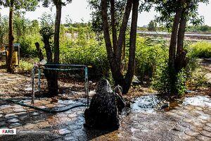 عکس/ خوزستان بر مدار « گرما »