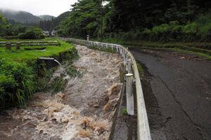 عکس/ بارش شدید باران صدها هزار ژاپنی را آواره کرد