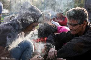 دو مخدر پرمصرف در بین جوانان کشور