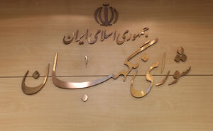 ماجرای تأیید صلاحیت «تاجگردون» و «حسنوند» توسط شورای نگهبان
