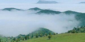 عکس/ نمایی بکر از جنگل ابر در شاهرود