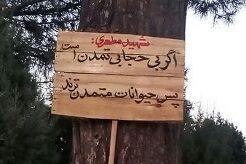 تابلوهای خاص به تهران میآیند + عکس