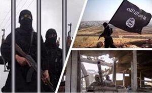 «مغز متفکر اقتصادی» داعش در شرق سوریه کشته شد