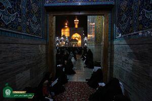عکس/ گلباران حرم رضوی در شب میلاد امام رضا(ع)