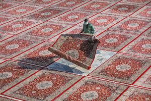 عکس/ قطعهای از بهشت در آغوش مشهد