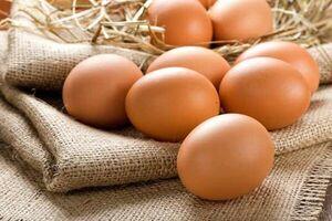 خرابکاری در صادرات تخم مرغ