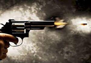 جزئیات تیراندازی توسط راننده نماینده اصفهان در مجلس